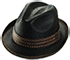 Palm Leaf Fedora graphic